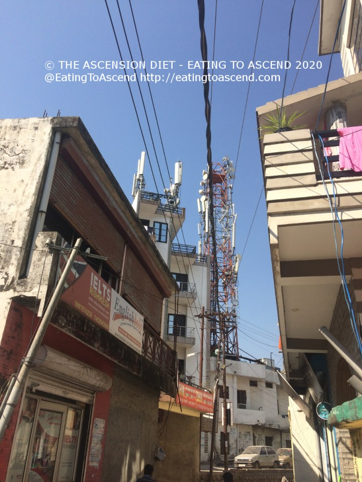 5G SheeshamJhari Main Road 15Feb2020a