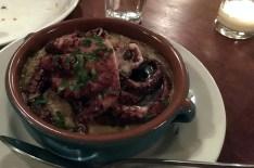 ulivo-octopus