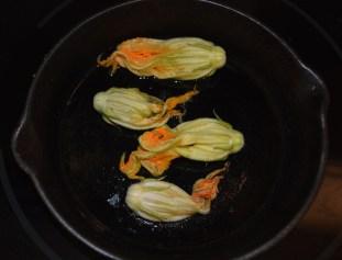 garden zucchini 015
