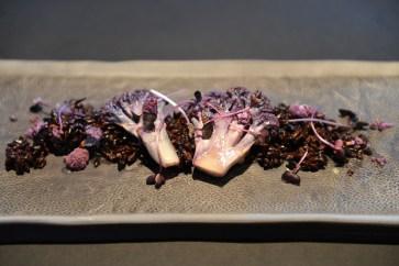 Violetter Blumenkohl auf Riso Venero an weisser Schokoladensauce