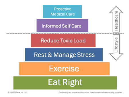wellnessdiagram