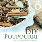 DIY – Homemade Potpourri!