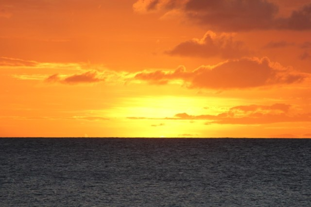 Glorious sunset this evening on Palm Island