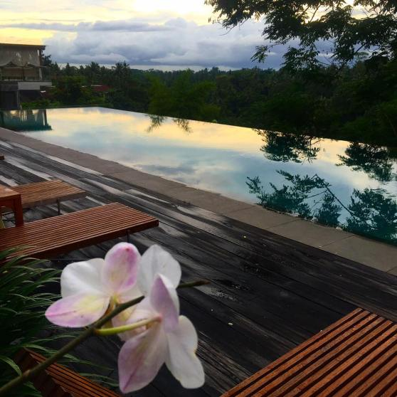 Sunset over the infinity pool at Bisma Eight in Ubud