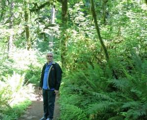 David Fern Path
