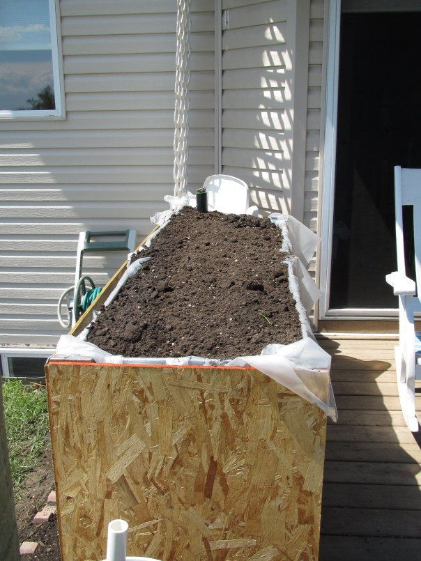 Soil in, just the trim left before planting