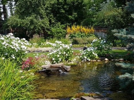 Duck pond and garden to enjoy the beauty