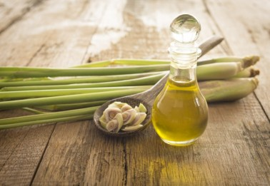 Lemongrass Essential oils in bottle with stalks