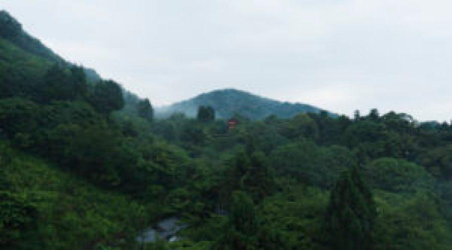 Vue du temple Kiyomizudera