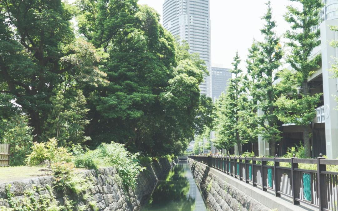 Des grattes ciels de Shinbashi à l'île artificielle d'Odaiba