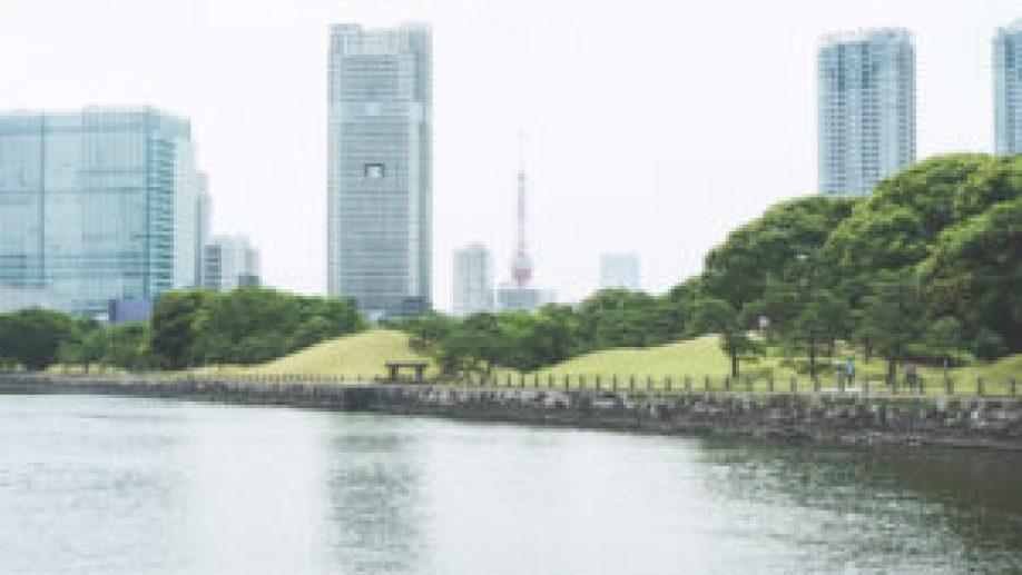 Les grattes-ciels de Shinbashi