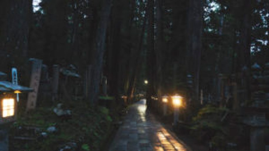 L'allée du cimetière Oku-No-In