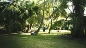 Jardin de la tribu à la petite baie