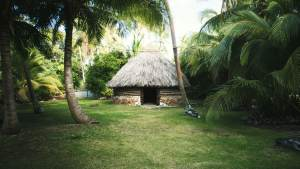 case traditionnelle kanak