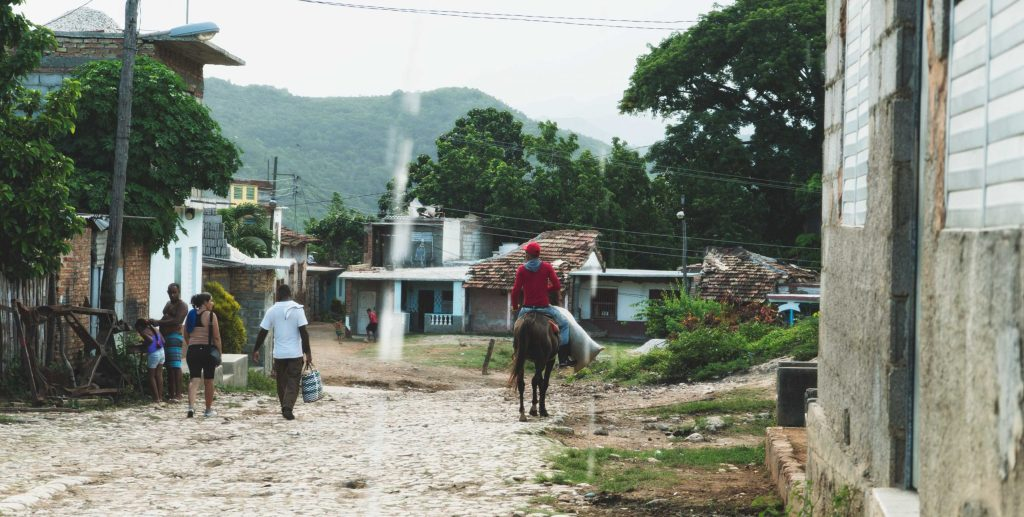 chevaux à trinidad