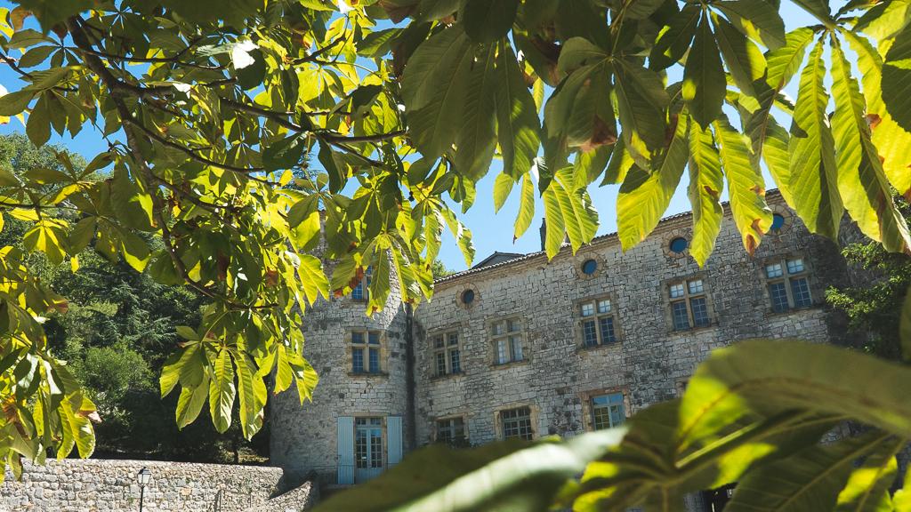 le chateau de Vogüé