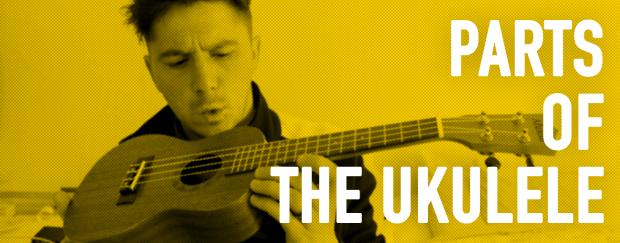 parts of the uke