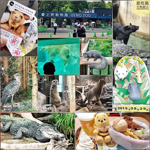 。東京 上野。上野動物園:快速攻略,2個小時跑完園區的16個經典景點,必吃必買大公開^^