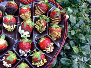 Heart-Shaped Box Dilemma Valentine's Day 5