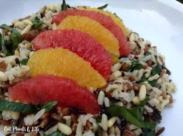 Citrus Rice1