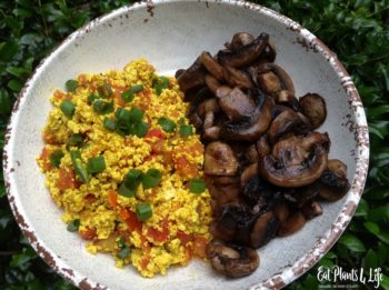 Quick Vegan Breakfast Ideas 5