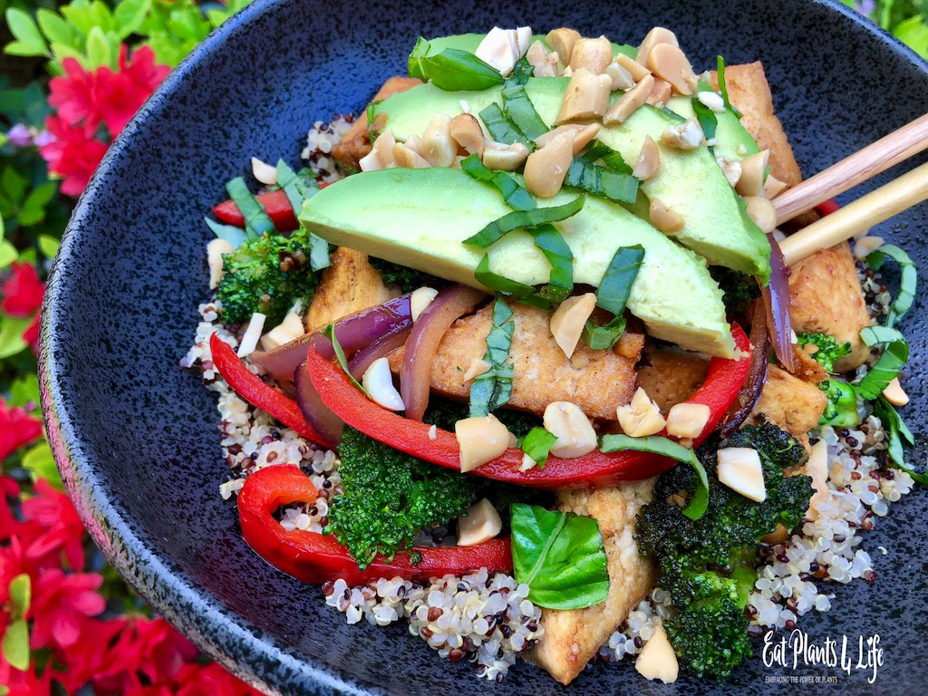 Top Vegan Cookbooks & Vegan Stir-Fry | Eat Plants 4 Life 3
