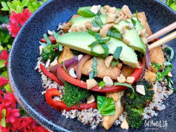 Top Vegan Cookbooks & Vegan Stir-Fry | Eat Plants 4 Life Vegan Stir Fry