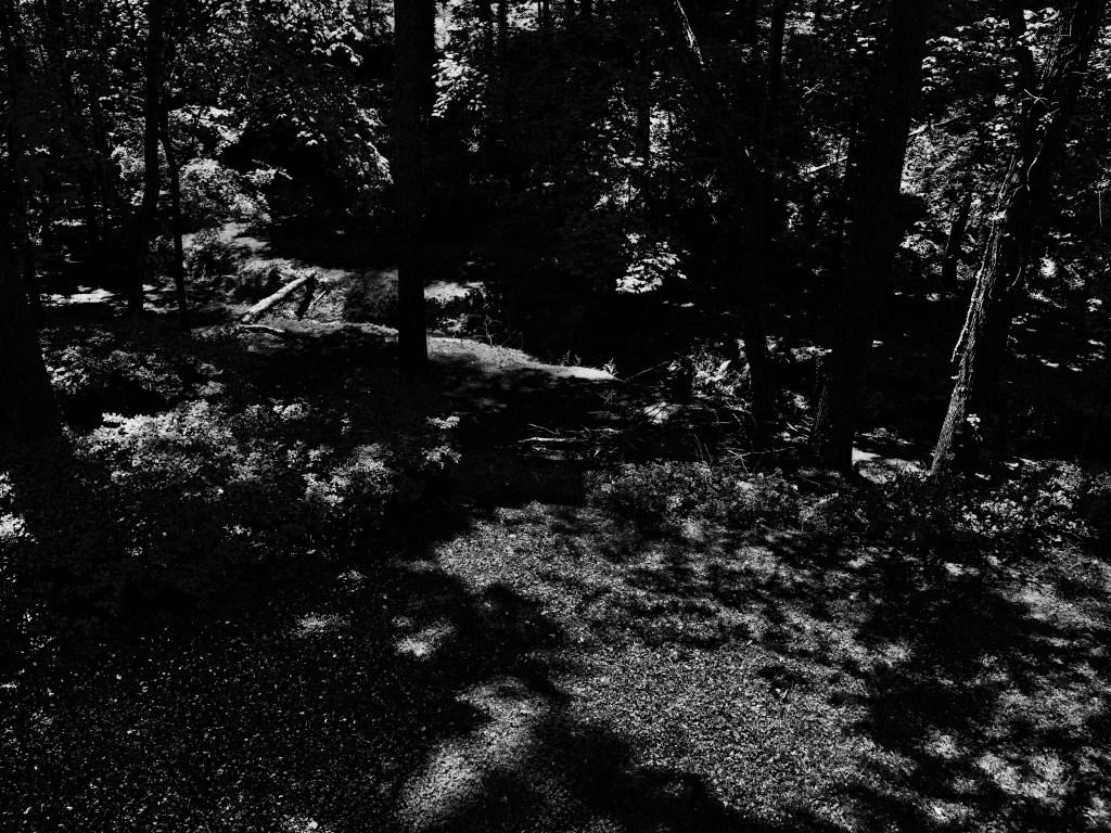 camping-photo1