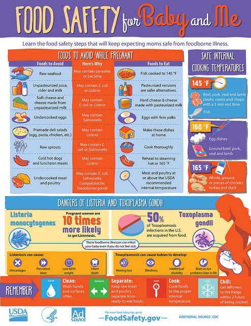 Food Safety Tips For Pregnancy » Eat Right Mama