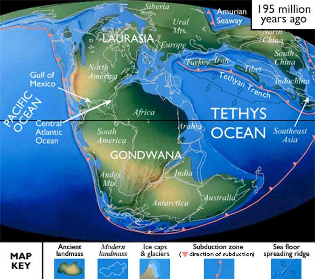 Pangea Maps - eatrio net