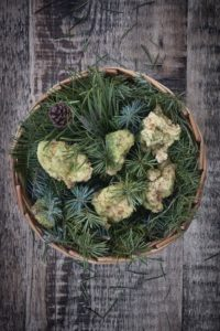 Buttermilk fried chicken and pine salt from The Clove Club. Photo credit: Jean Cazals.