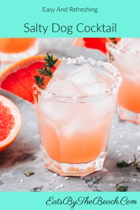 A Salty Dog Cocktail made with vodka, ruby red grapefruit juice, a twist of lime and a splash of club soda, then garnished with a salted rim and wedge of red grapefruit.