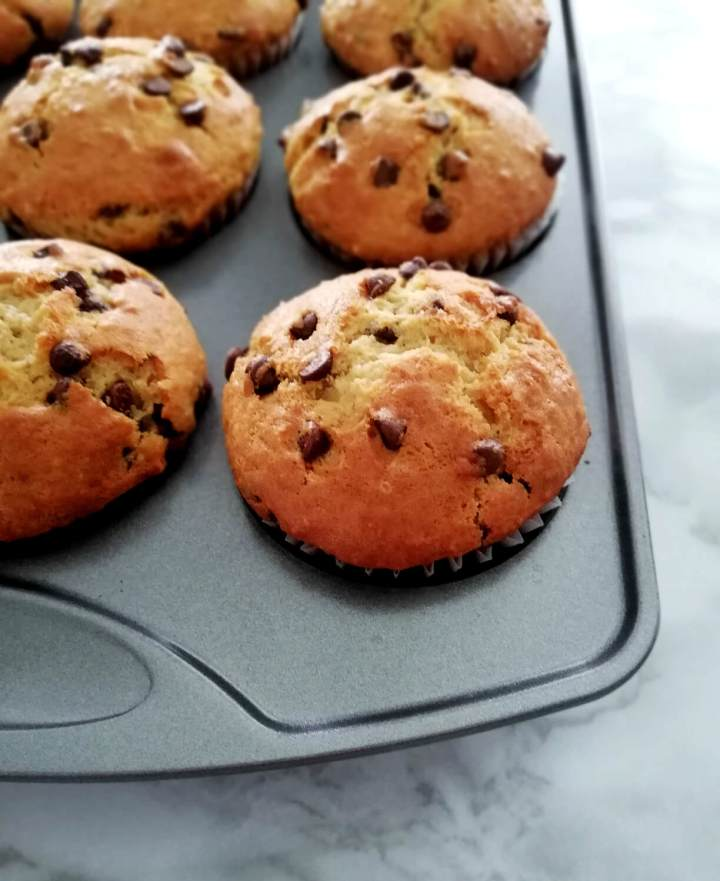 chocolate chip muffins in muffin tin angled view