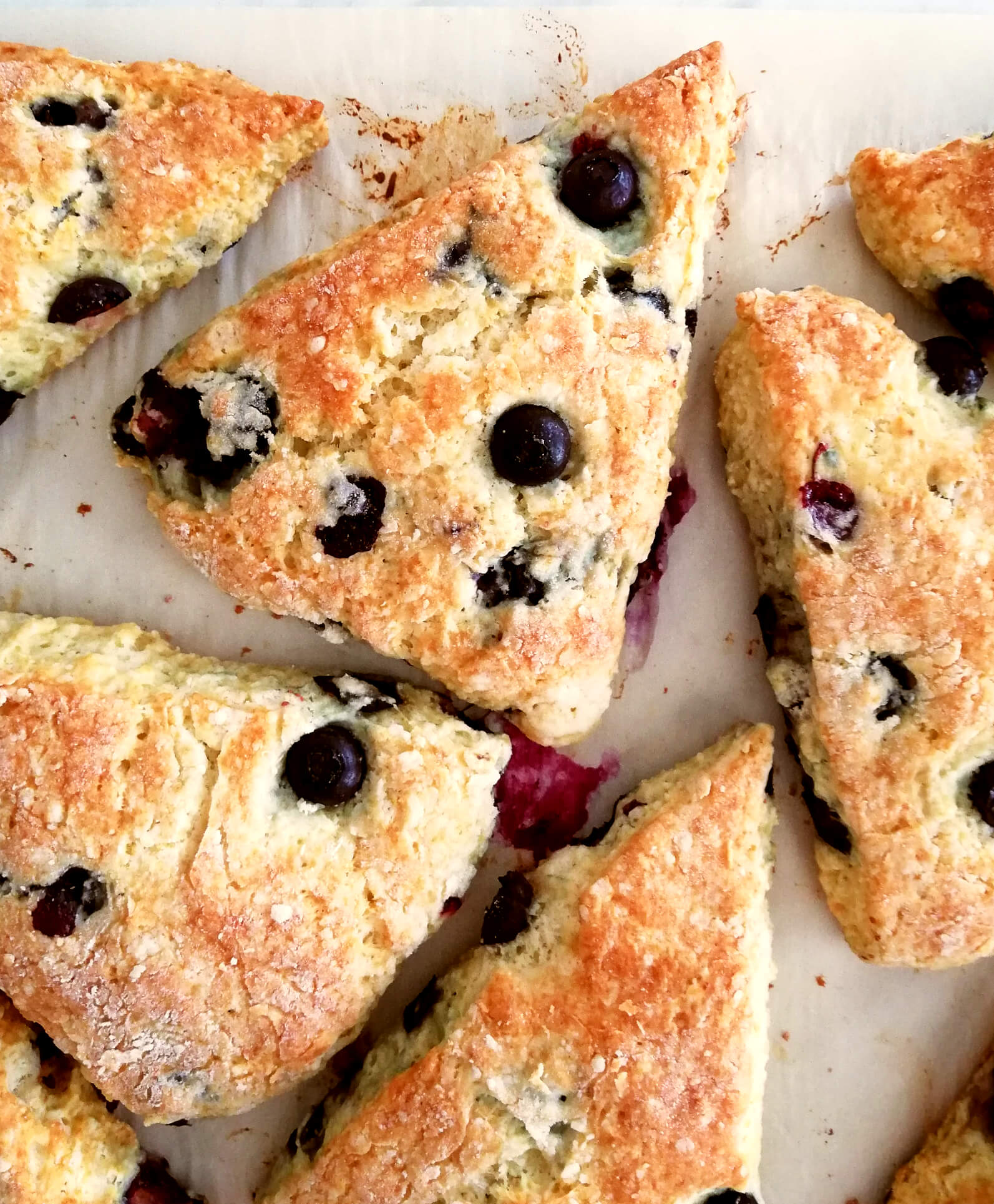 blueberry scones overhead close up of one