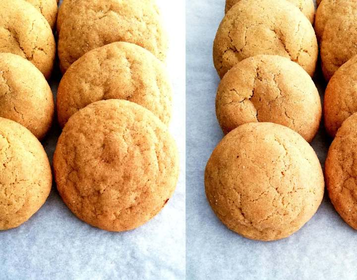 snickerdoodles lined up - thin _ thick cookies
