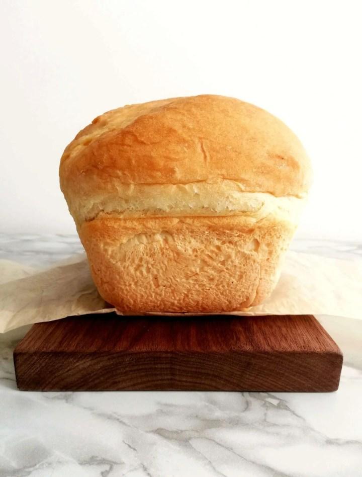 sandwich bread loaf head on view