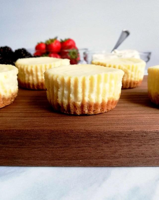 mini cheesecakes plain side view