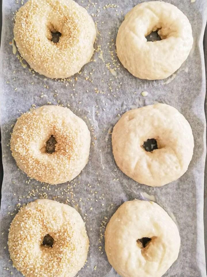 homemade bagels on baking sheet before baking