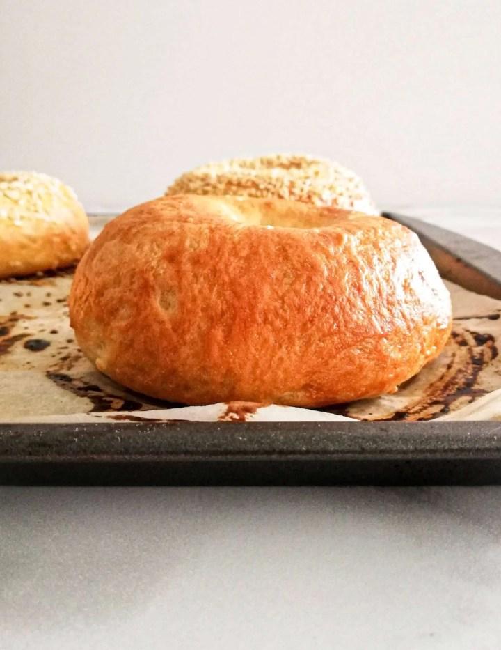 homemade bagels plain bagel side view