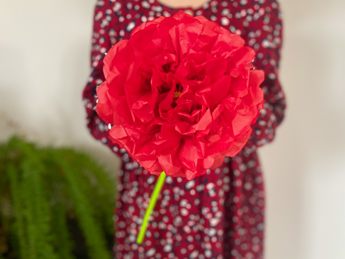 Share The Love This Valentine's Day with Paper Flowers