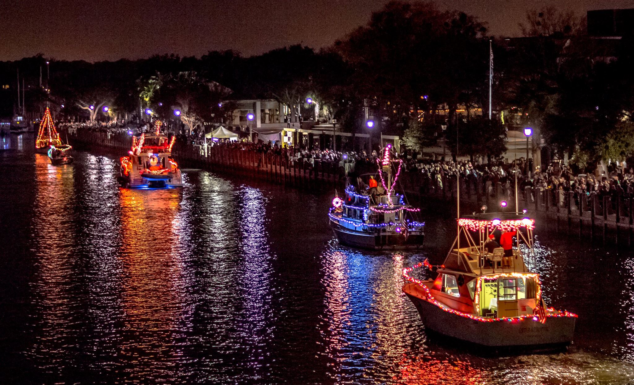 Christmas Lights Boat Parade Christmas Lights Card And