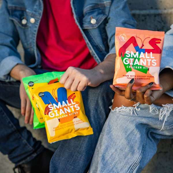 Small Giants Cricket Chips are the perfect snacks for flexitarians and people interested in entomophagy