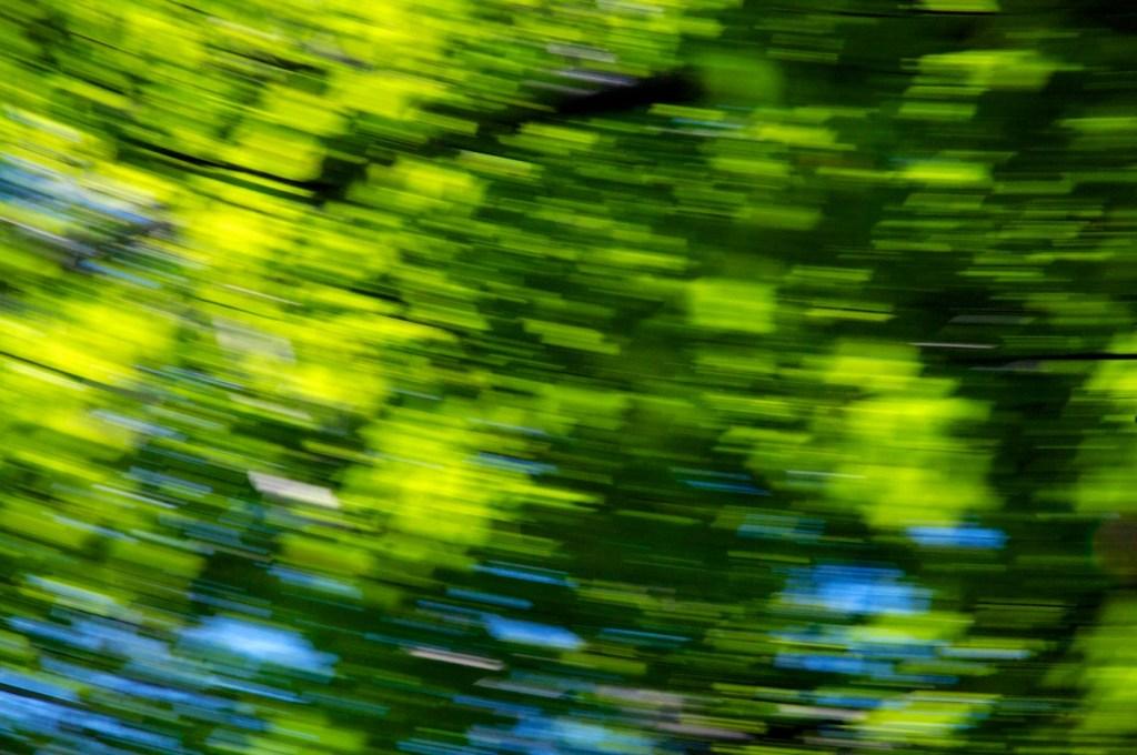Spring Blur