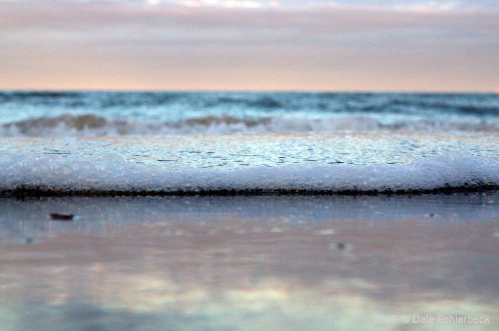 Baby Sea