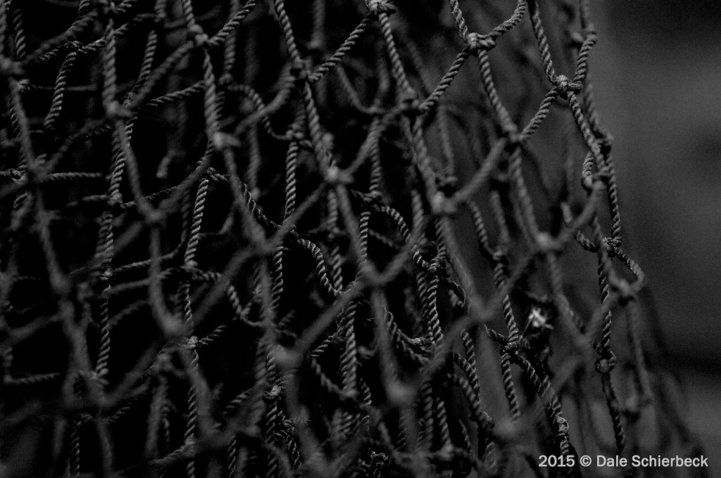 Caught in a Monochromatic Net