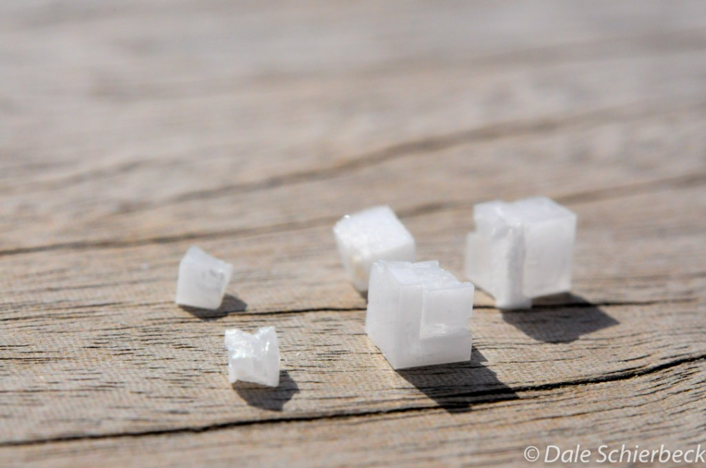 salt6