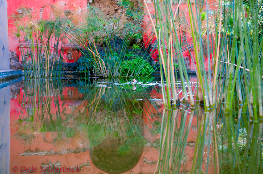 Reflection pool at Real Alcazar