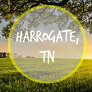 A Taste of Harrogate