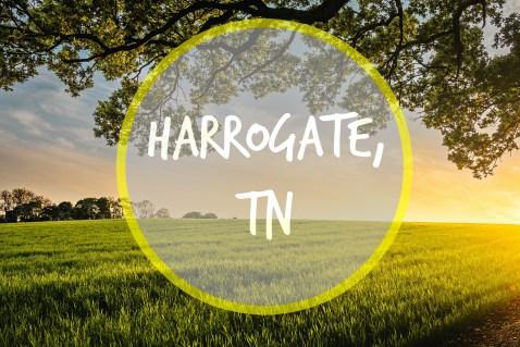 HARROGATE TN