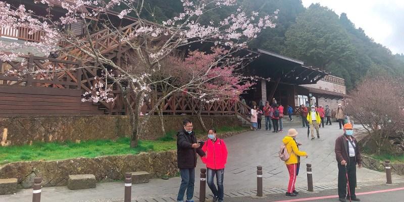 阿里山國家森林遊樂區|台灣最具知名、也最受歡迎的森林遊樂區,森林小火車、神木、雲海、日出與櫻花,還有台灣最高的玄天上帝廟!